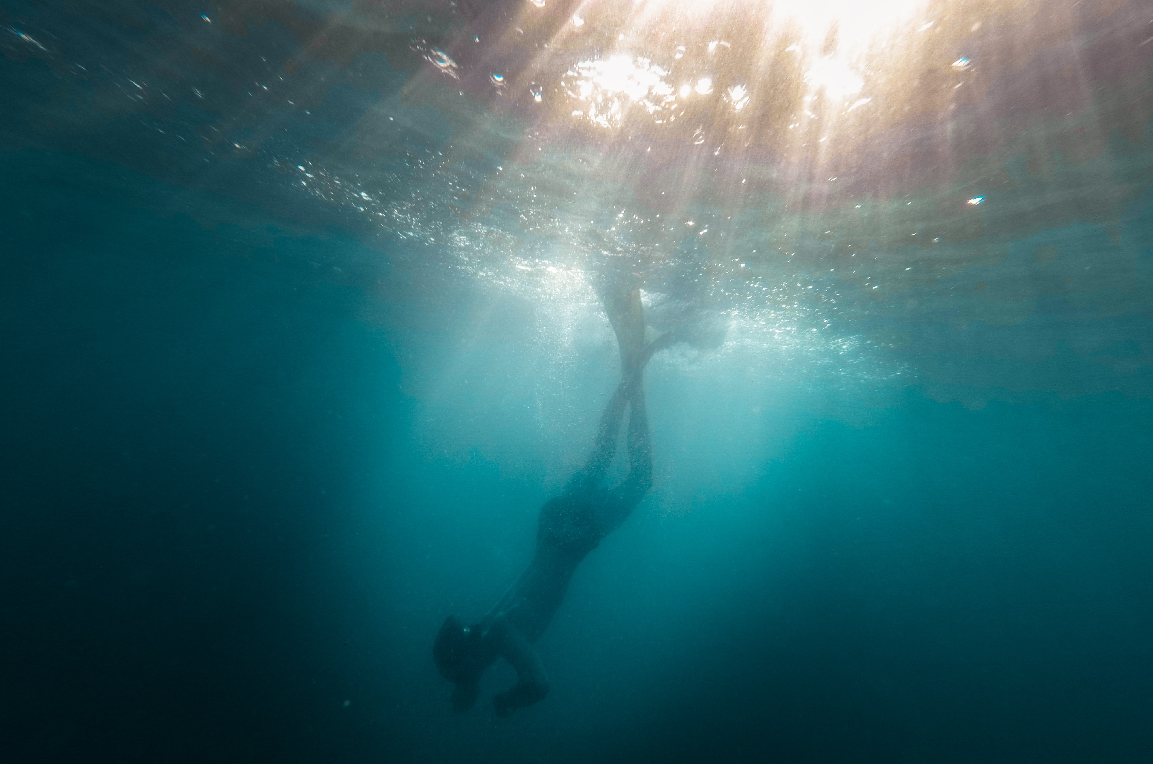 underwater photo of person diving