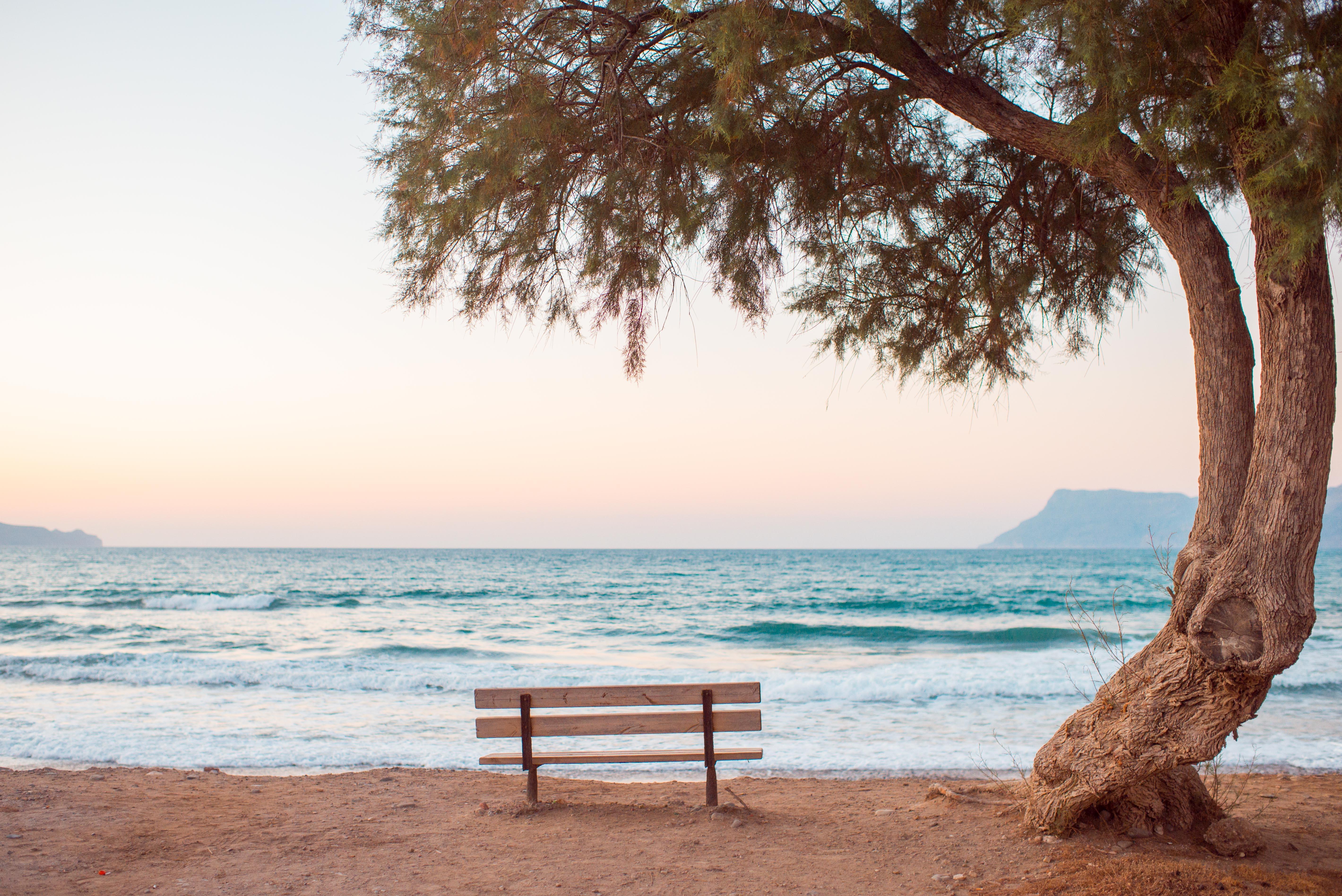 brown bench near seashore