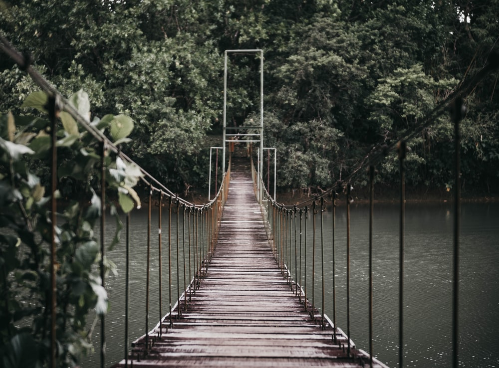 gray hanging bridge over body of water