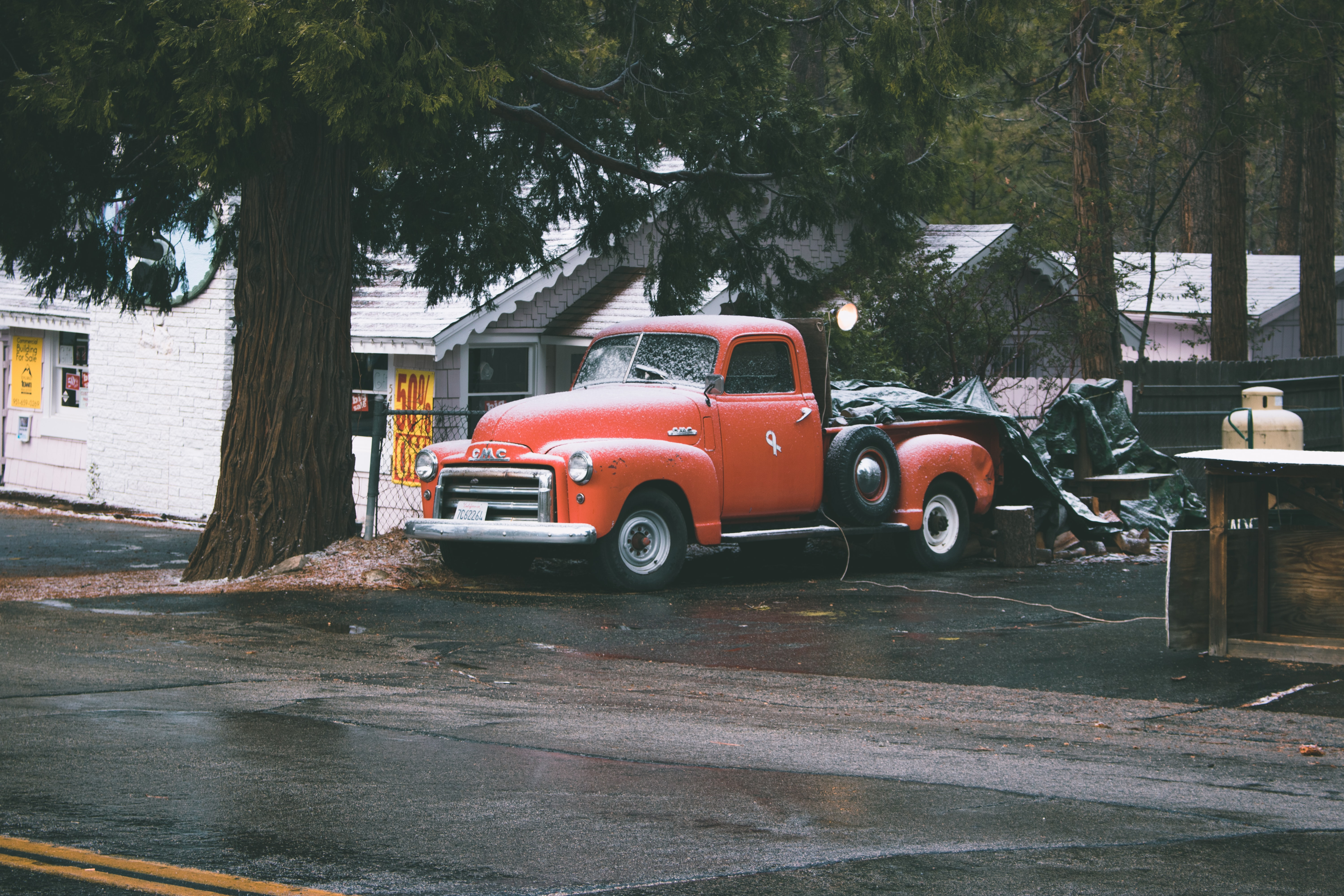red single cab pick up truck parked near large tree