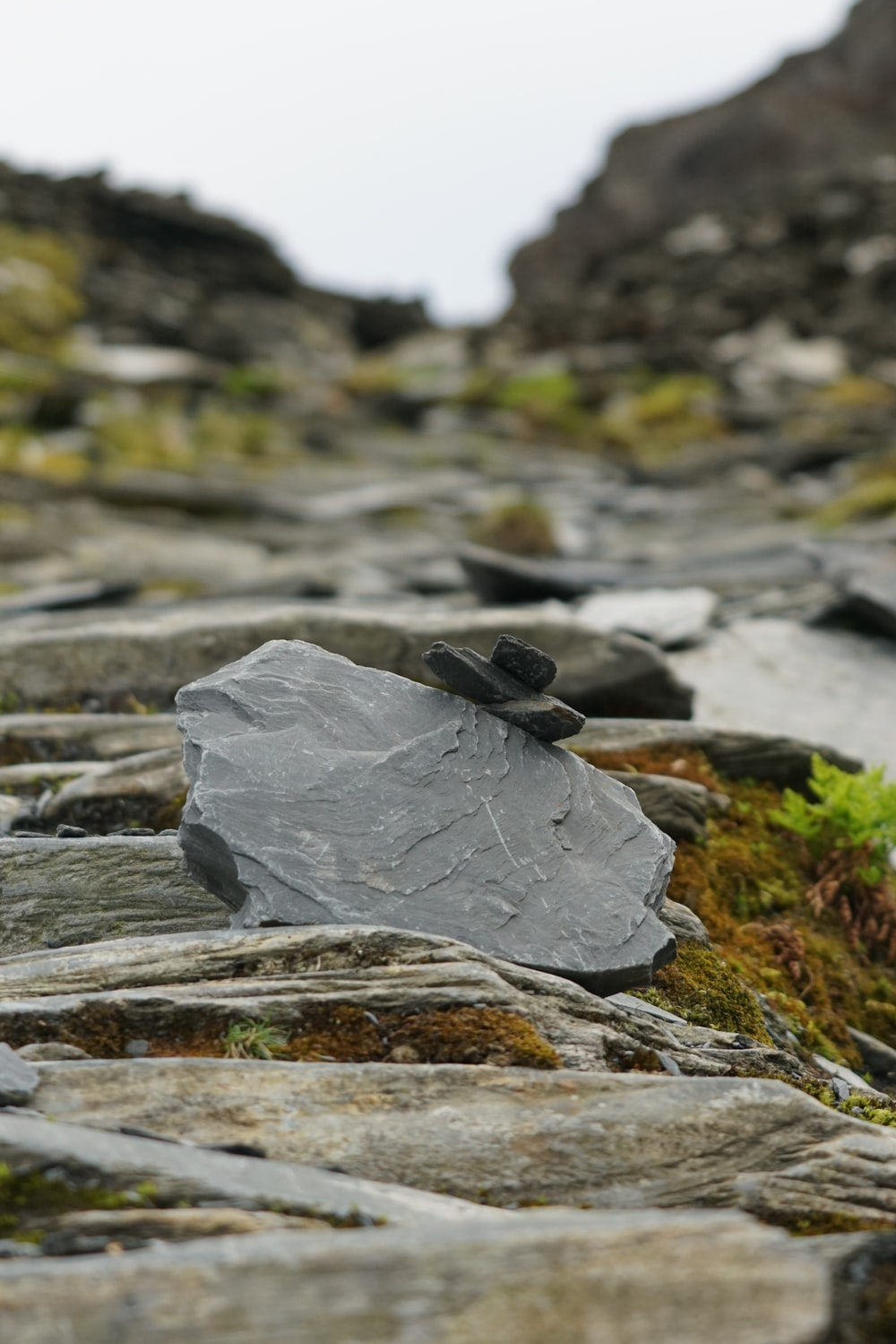 gray rock formation on gray rock at daytime