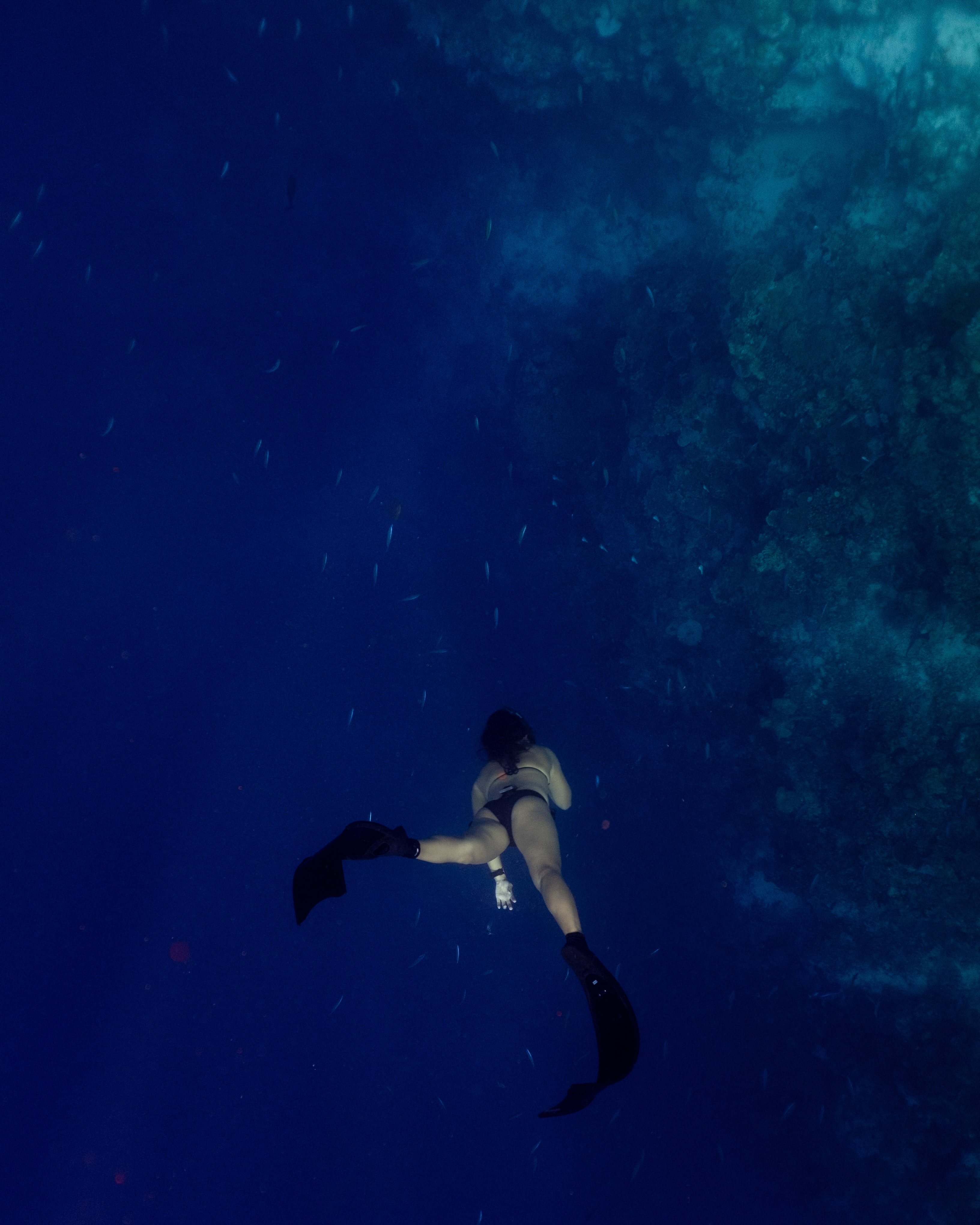 underwater photography of person