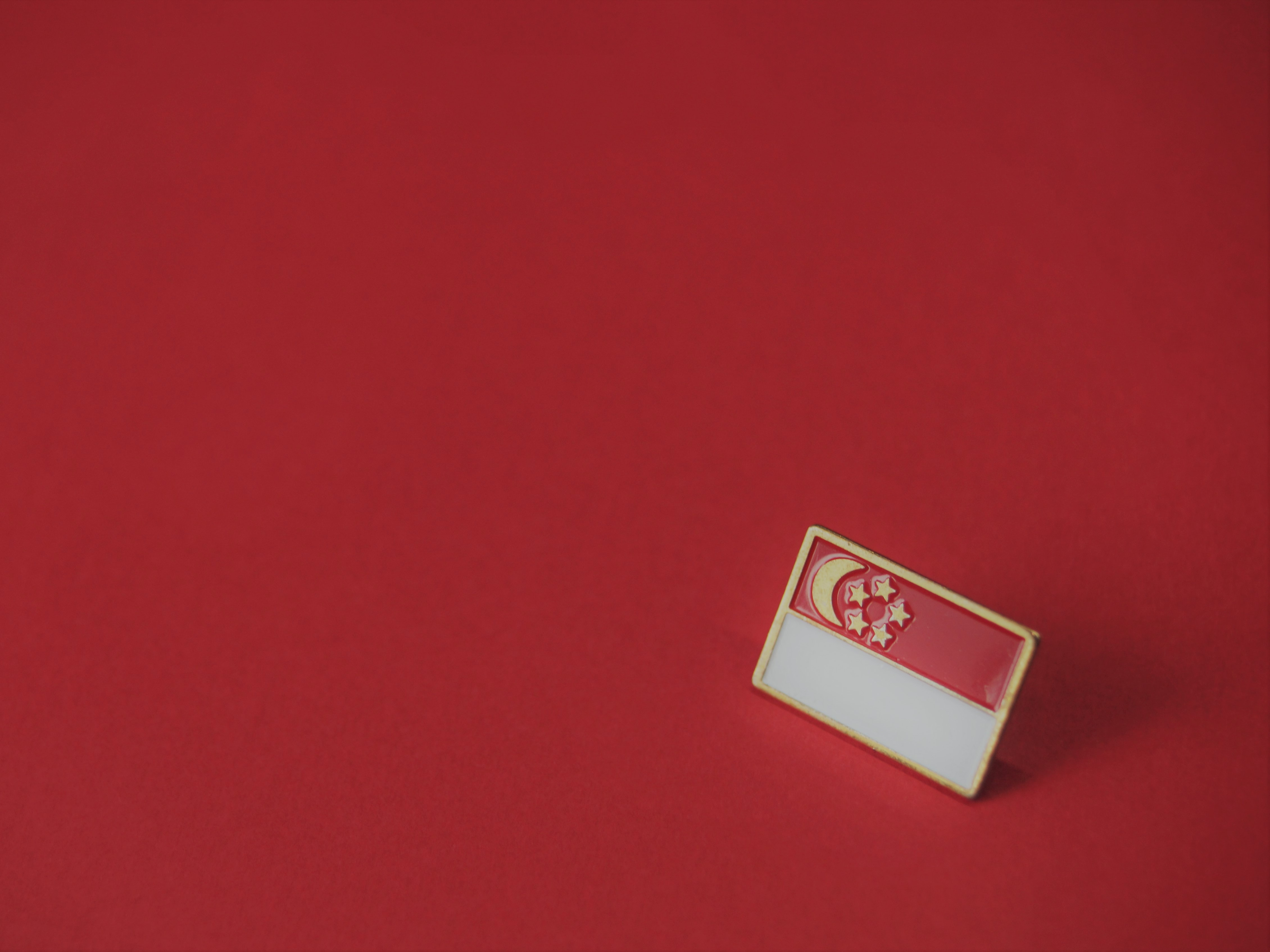 white and red flag pin