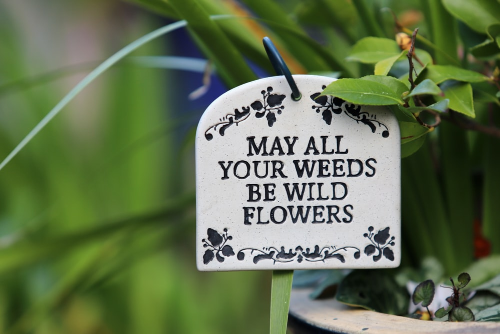 May All Your Weeds signage