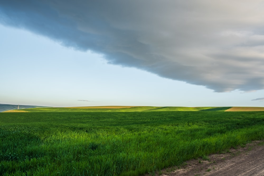 greenfield under white clouds