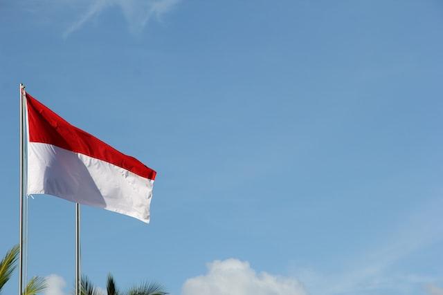 Alasn Indonesia sudah maju