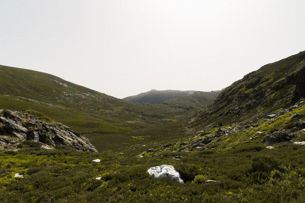 valley under white sky