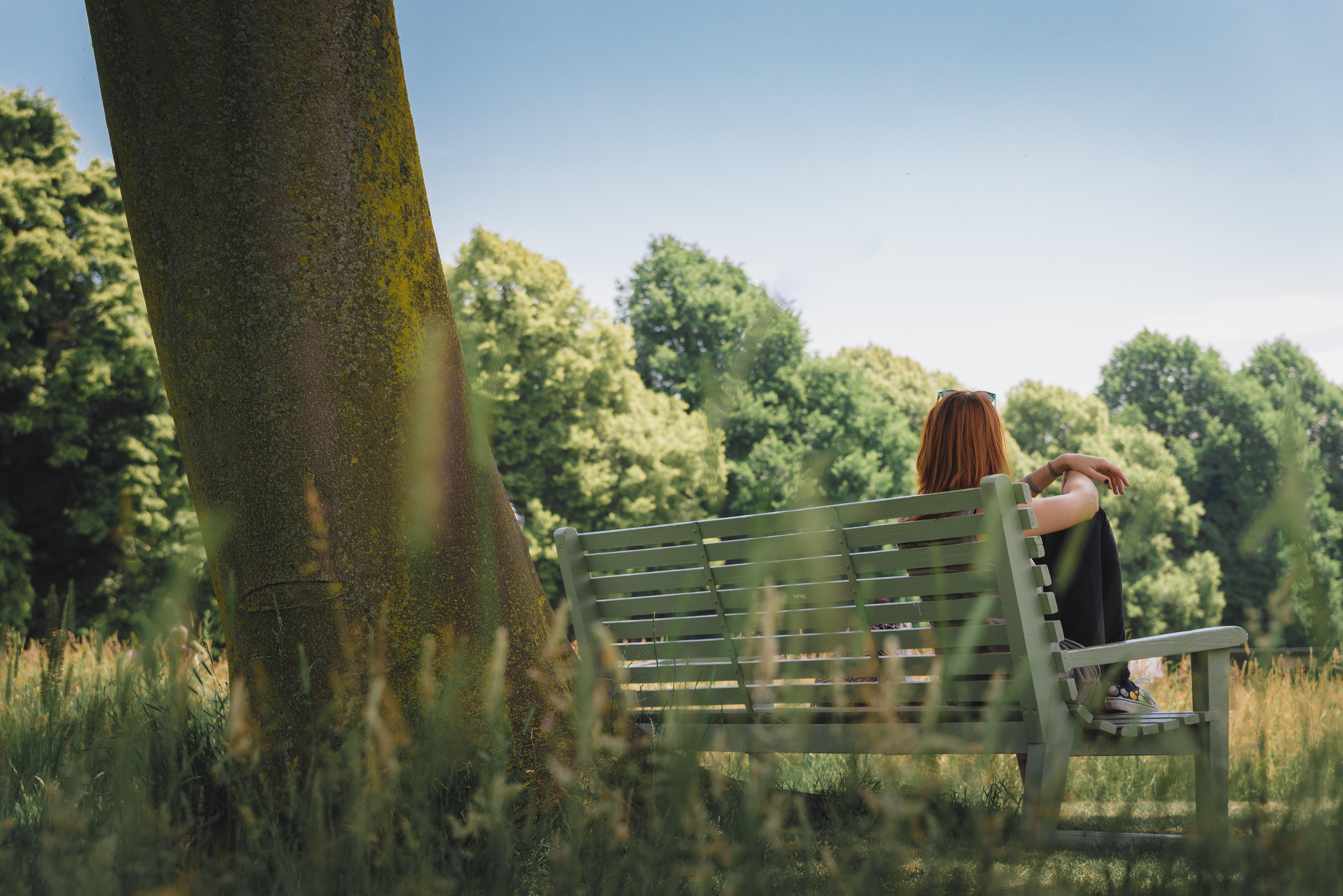 woman sitting on bench beside tree