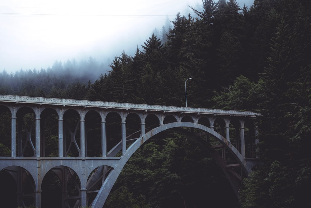 gray arch bridge surrounded with green trees at daytime