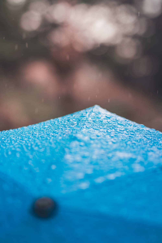 shallow focus photography of blue umbrella