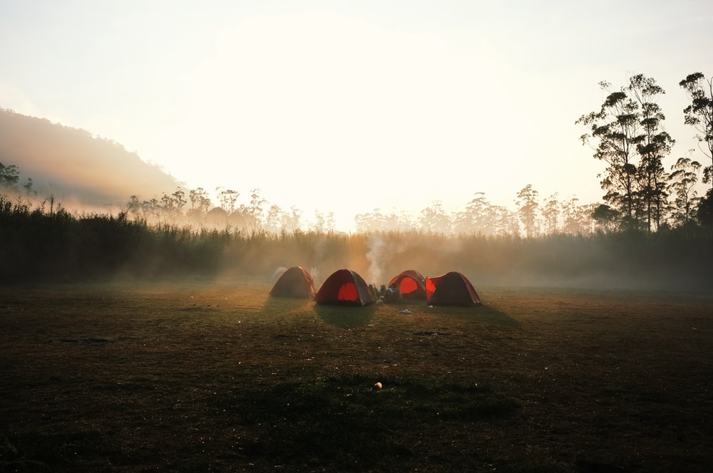 four red dome tent surrounded by trees