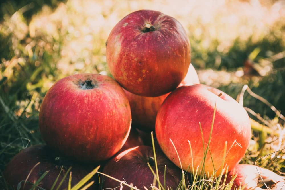 bunch of red apple on grass field