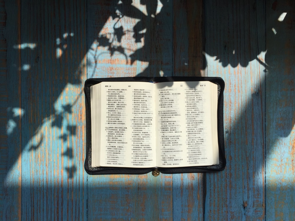 opened Bible page on teal panel at daytime