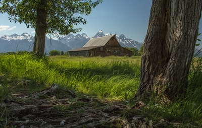 It would be an understatement to call the famous Moulton barns a popular destination for photographers in Grand Teton National Park. I had seen many images of this barn prior to our visit but never from this particular angle, which I think further captures the landscape at base level around Grand Teton.