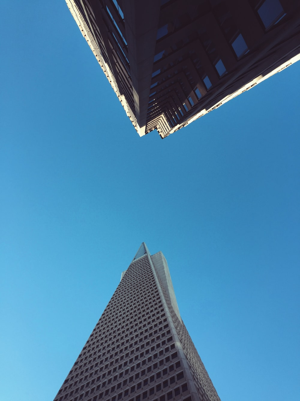 worm's-eye view photo of high-rise building