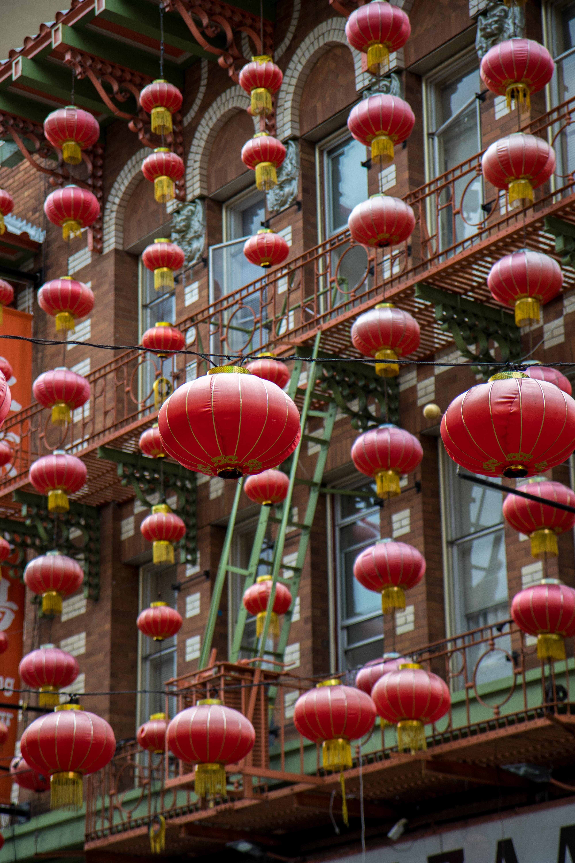 photo of hanged red paper lantern lot