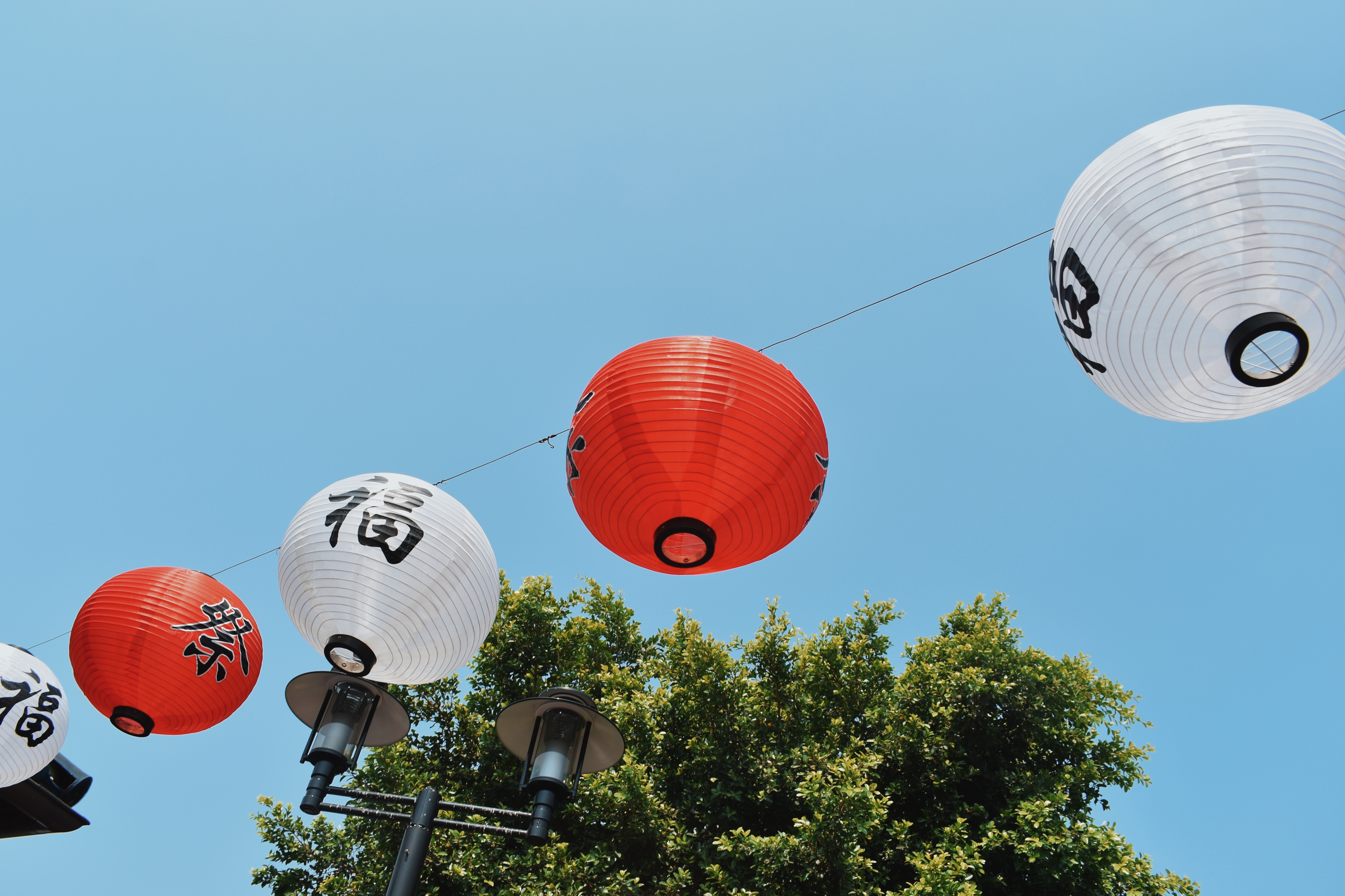 red and white Chinese lanterns beside black lamp post