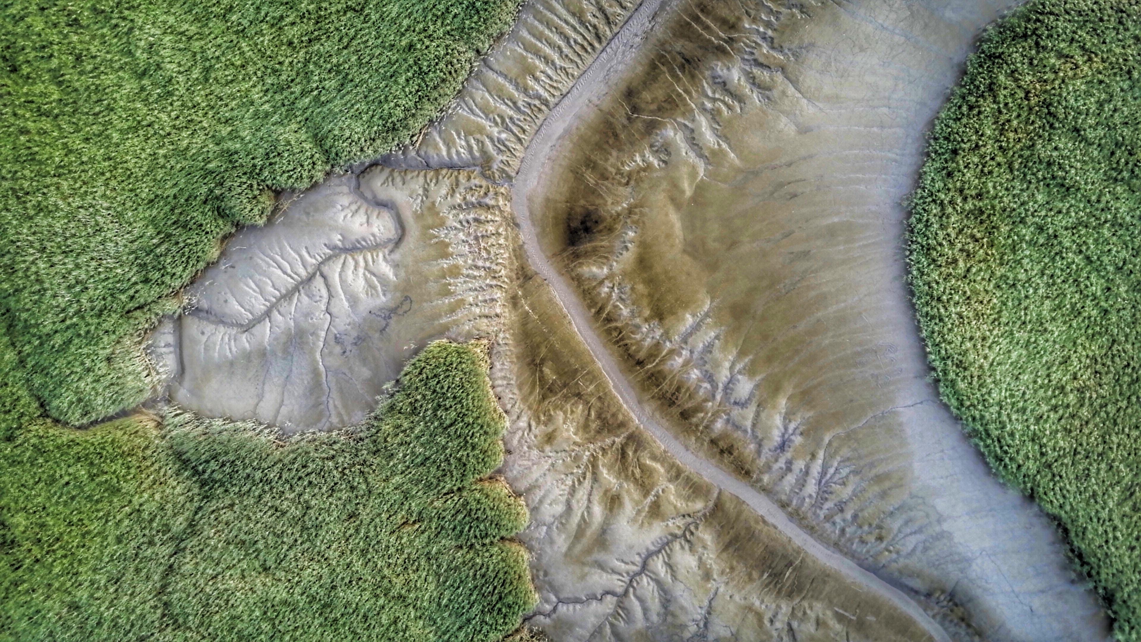 bird's-eye view of mountain trail