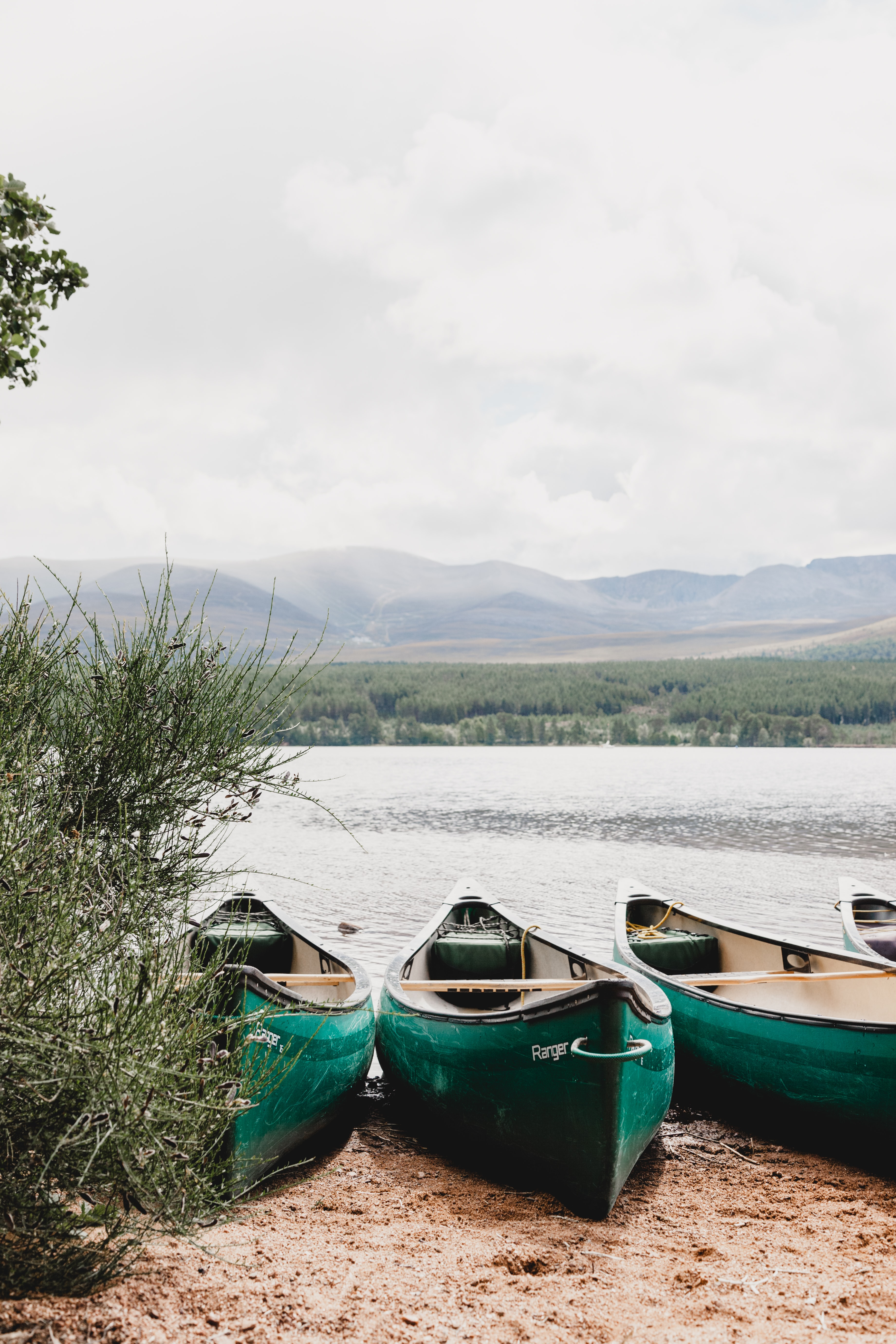 three green canoes on shoreline