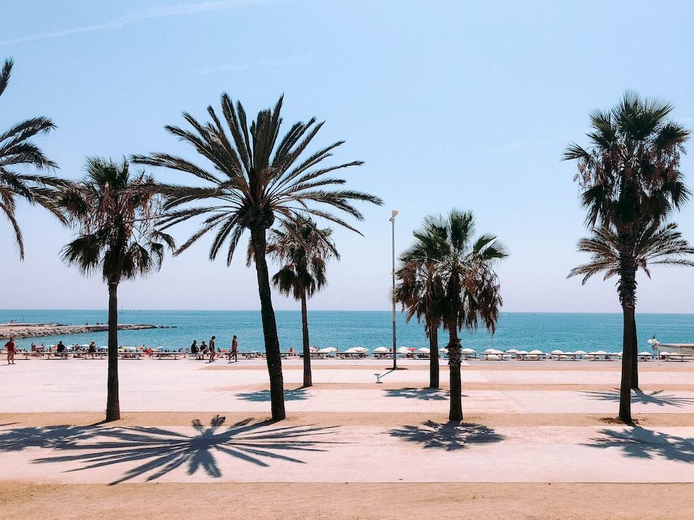 Bilder Barcelona Strand