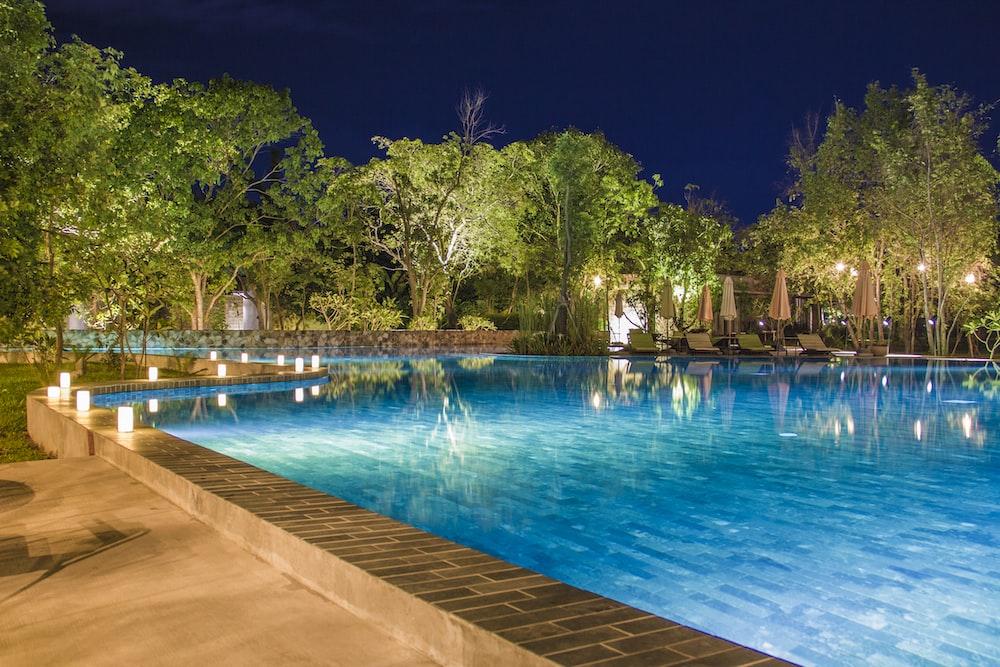 blue pool near tall trees at night