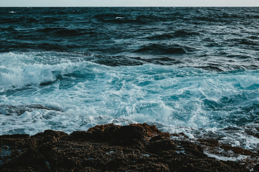 Sea Rock Pictures   Download Free Images on Unsplash