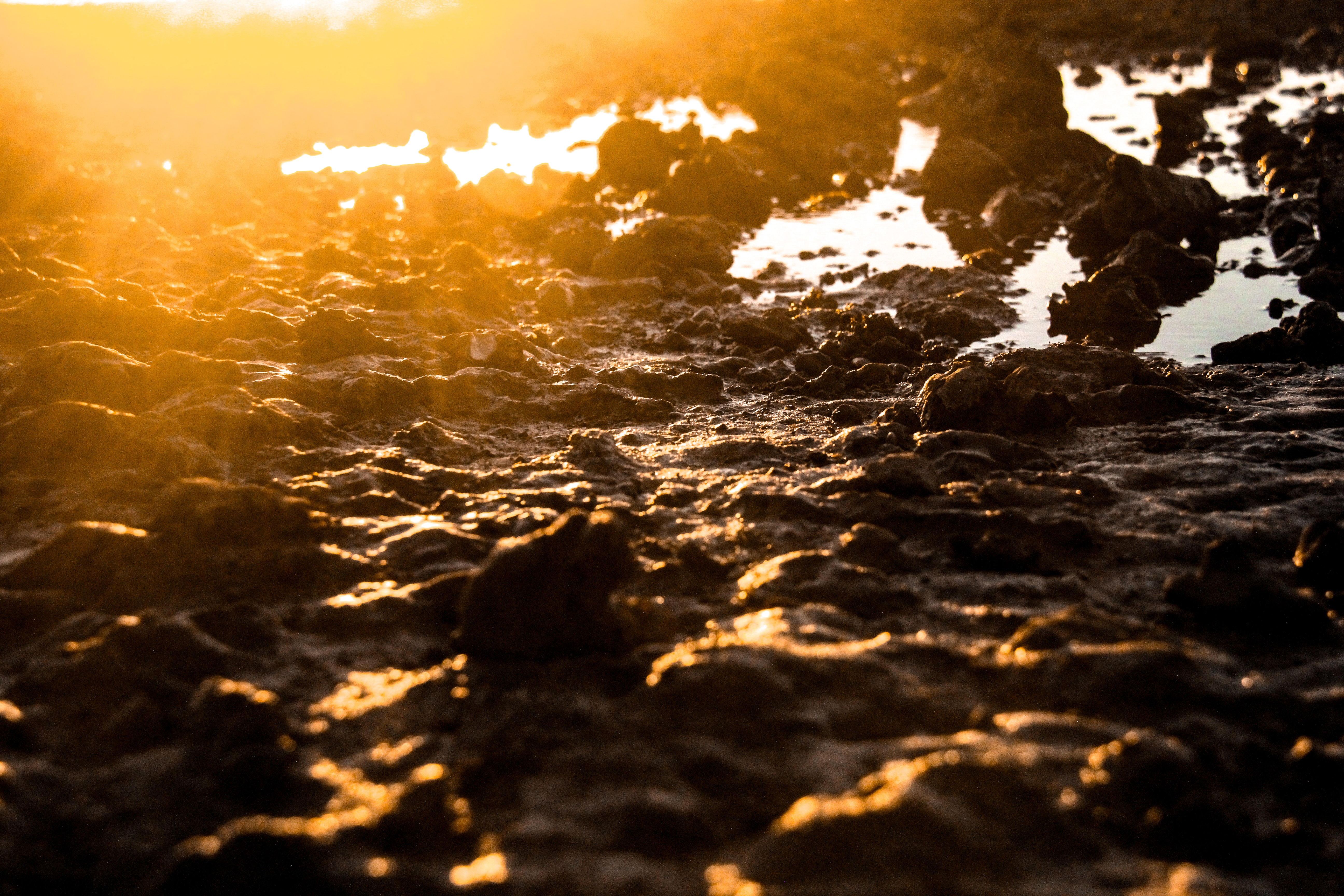 silhouette photo of rocks on ground
