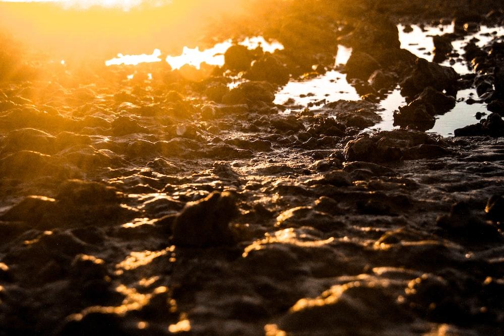 silhouette photo of rocks on ground