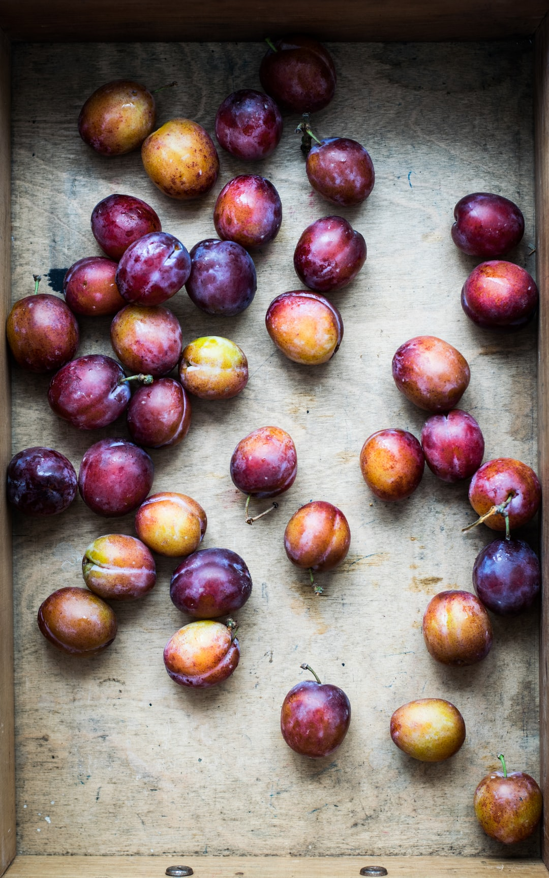 I'm charmed to see this light and color of plums!