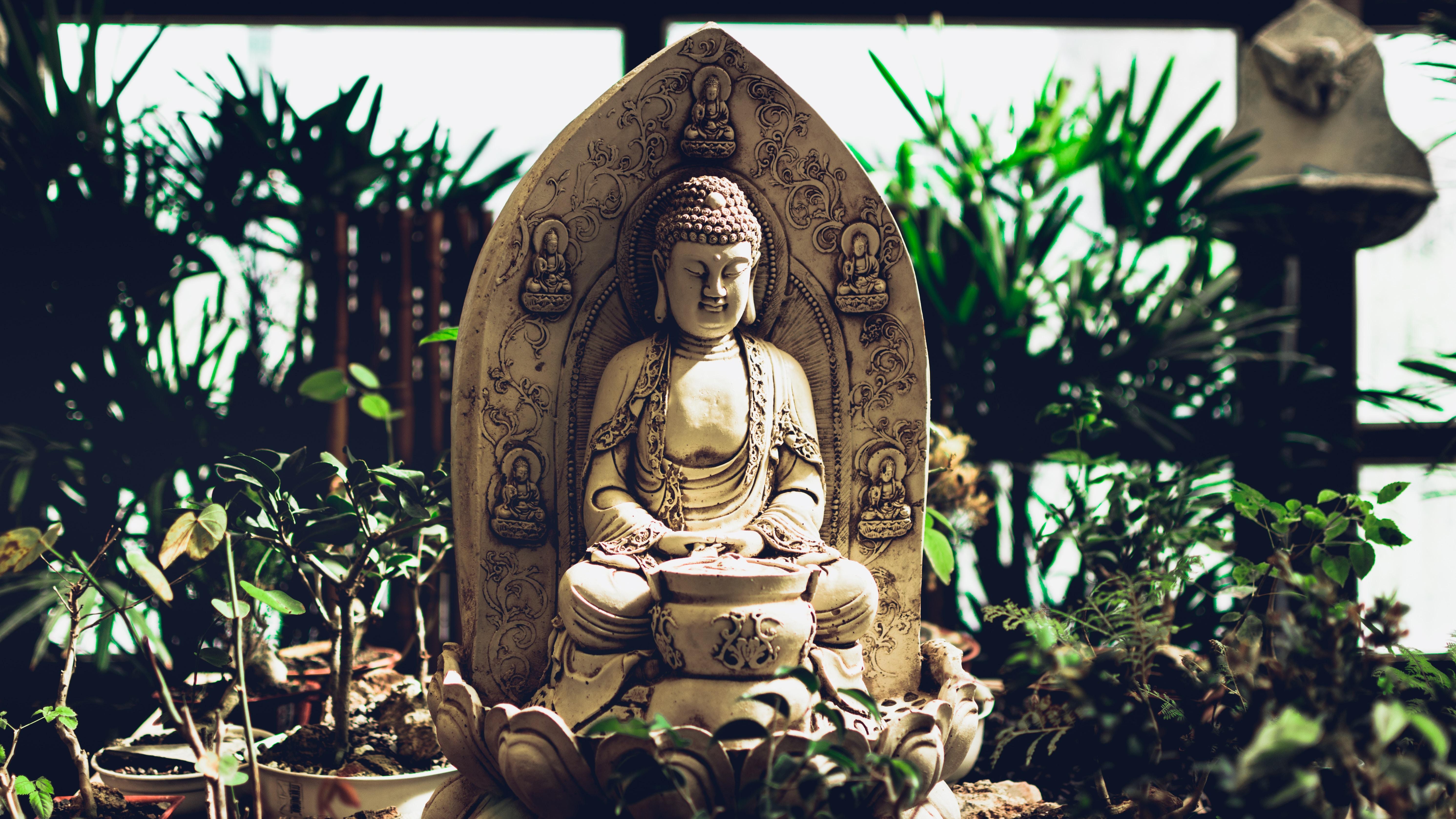 Buddhism In Telugu Pdf