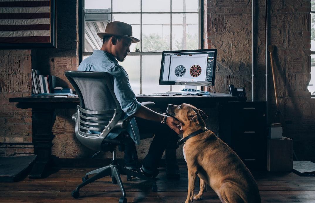 computer-dog