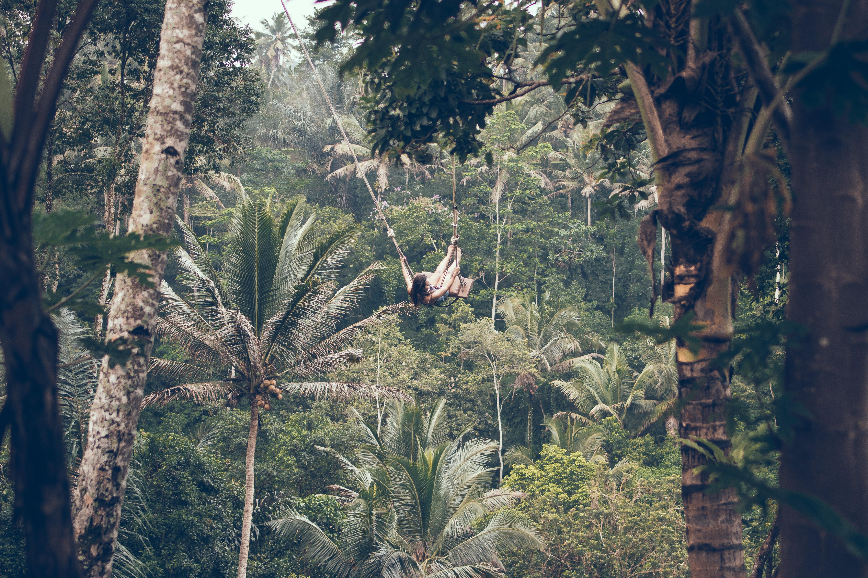 woman climbing between trees