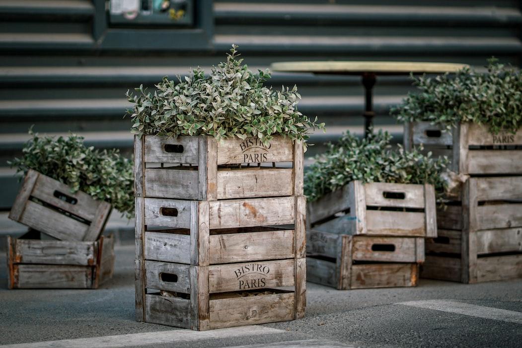 Vertical Crates Garden | 11 Creative Vertical Garden Ideas For A Unique Backyard