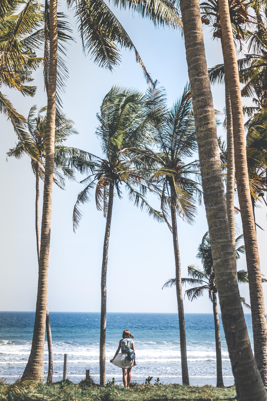 woman in gray dress near seashore under coconut trees