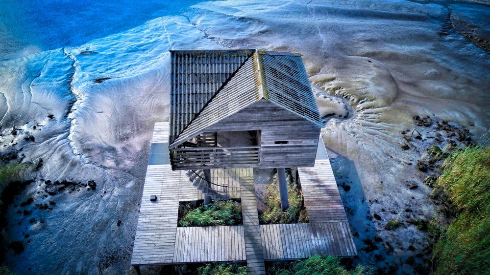 brown cottage beside beachline