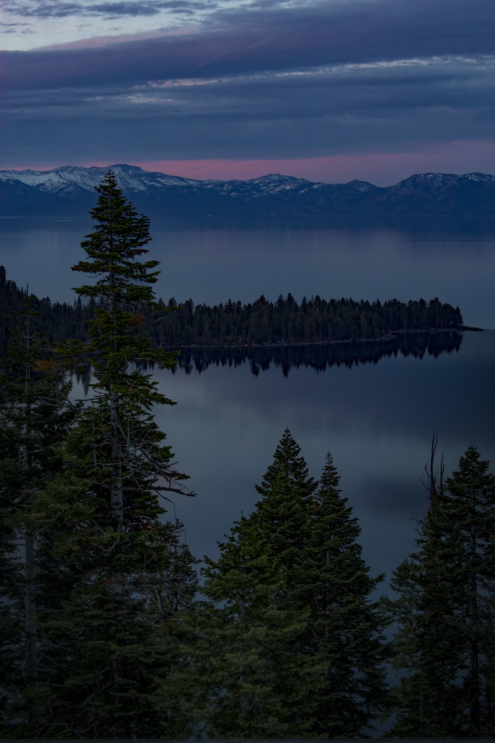 silhouette photography of forest and mountain near body of water