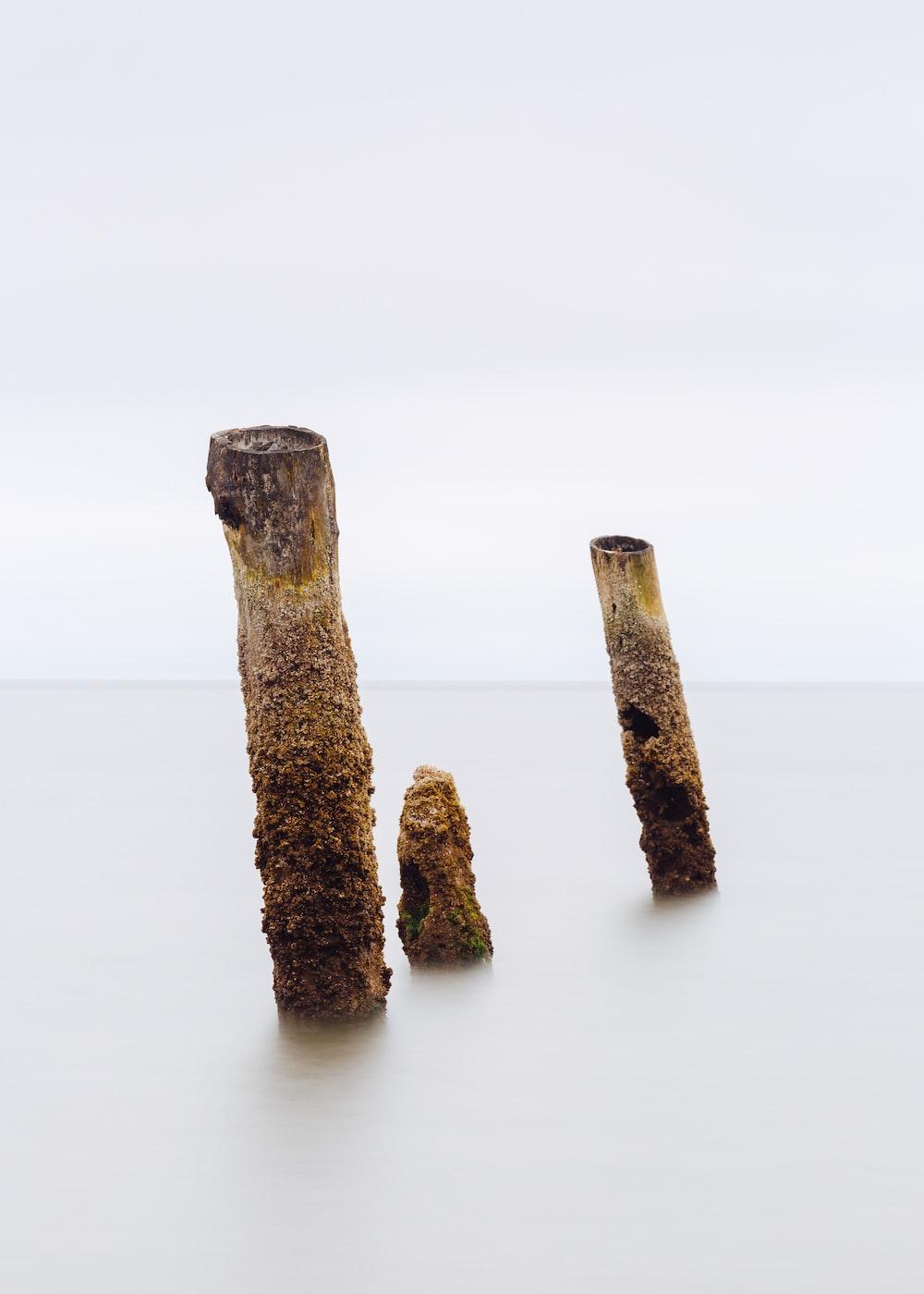 three brown bamboo poles
