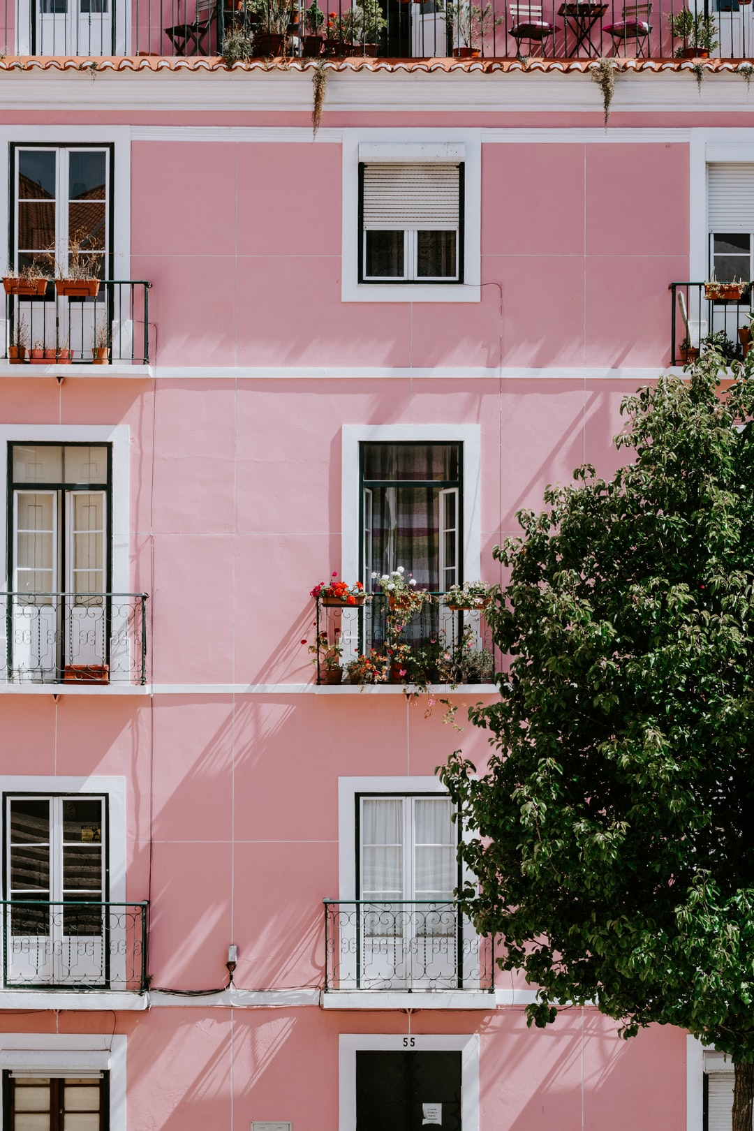 During a walk in Lisbon, we got lost. We walked for hours but then I saw this beautiful building with the most perfect balcony. How lovely do these flowers look?