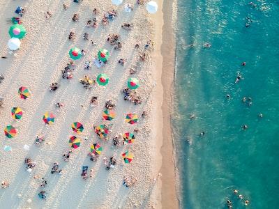 bird's eye view photo of people on beach brazil zoom background