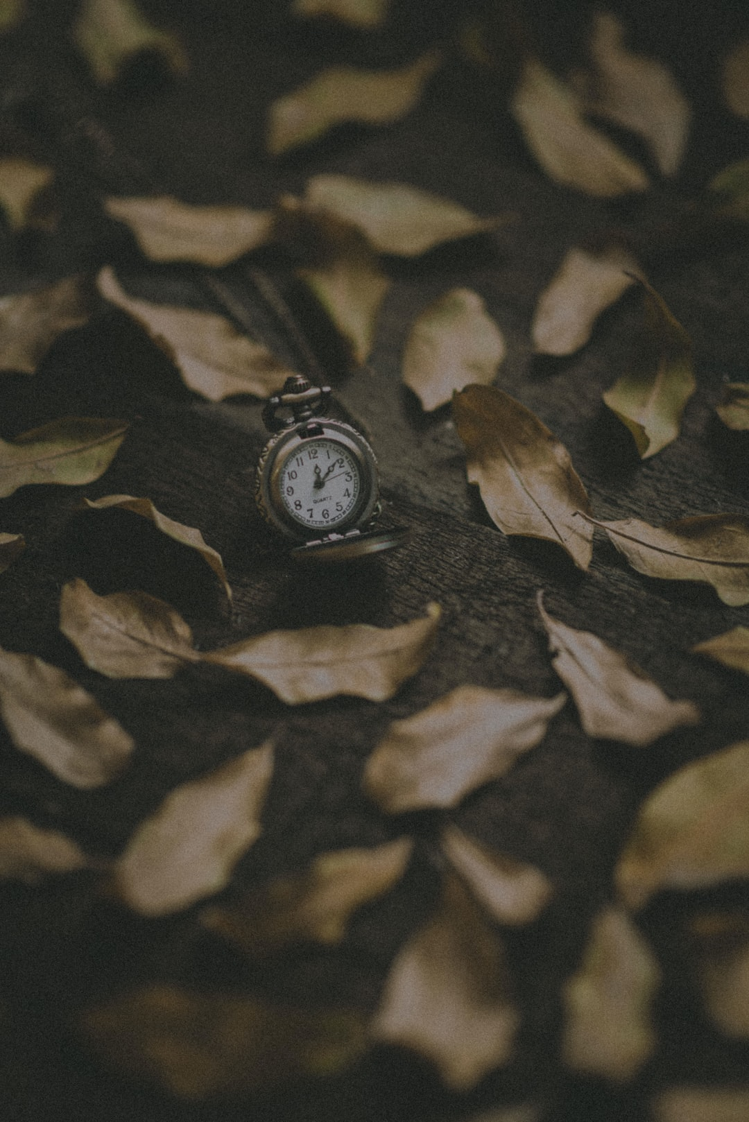 round silver-colored pocket watch at 12:09
