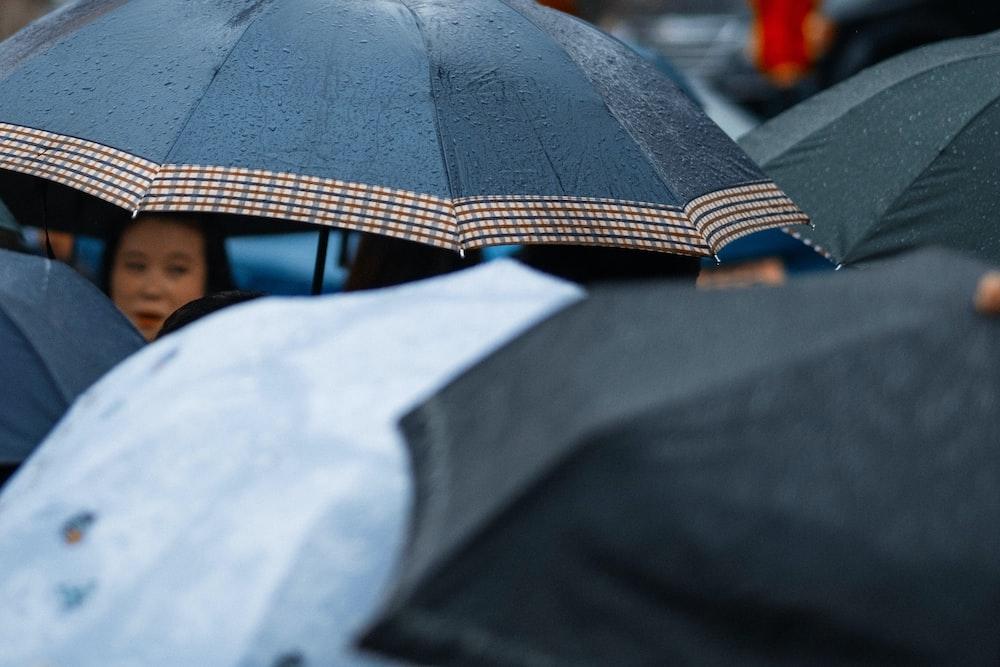 photo of people using umbrellas