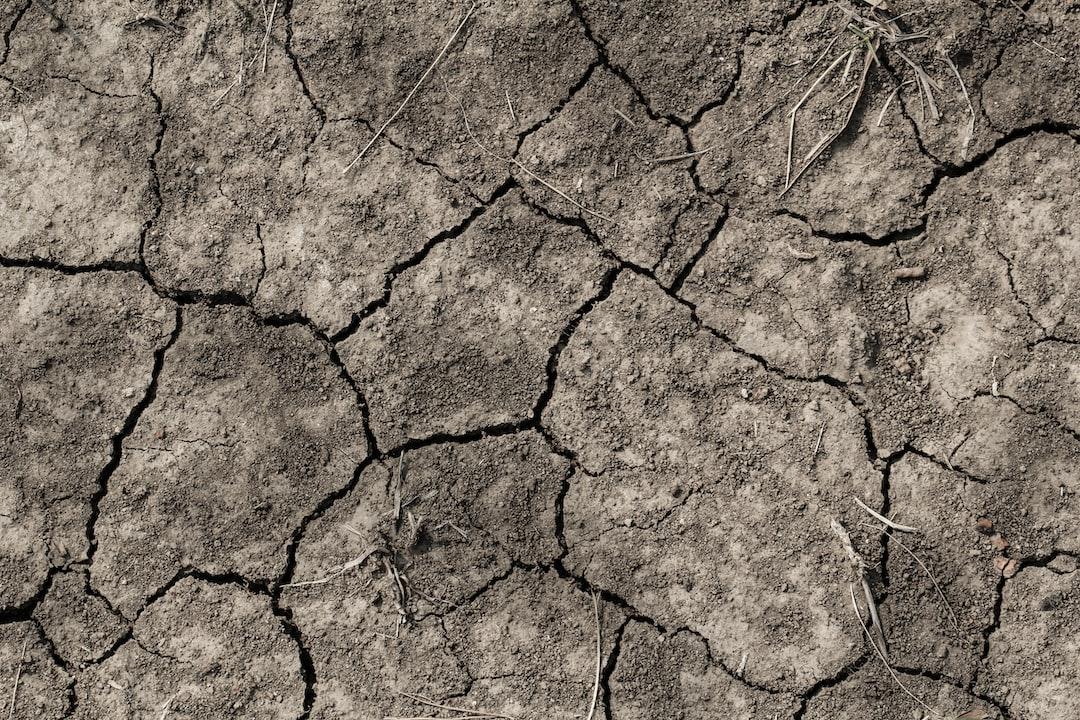 Dürreperioden in Mitteleuropa werden zunehmen