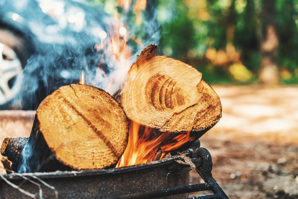 selected focus photography of two firewood on fire