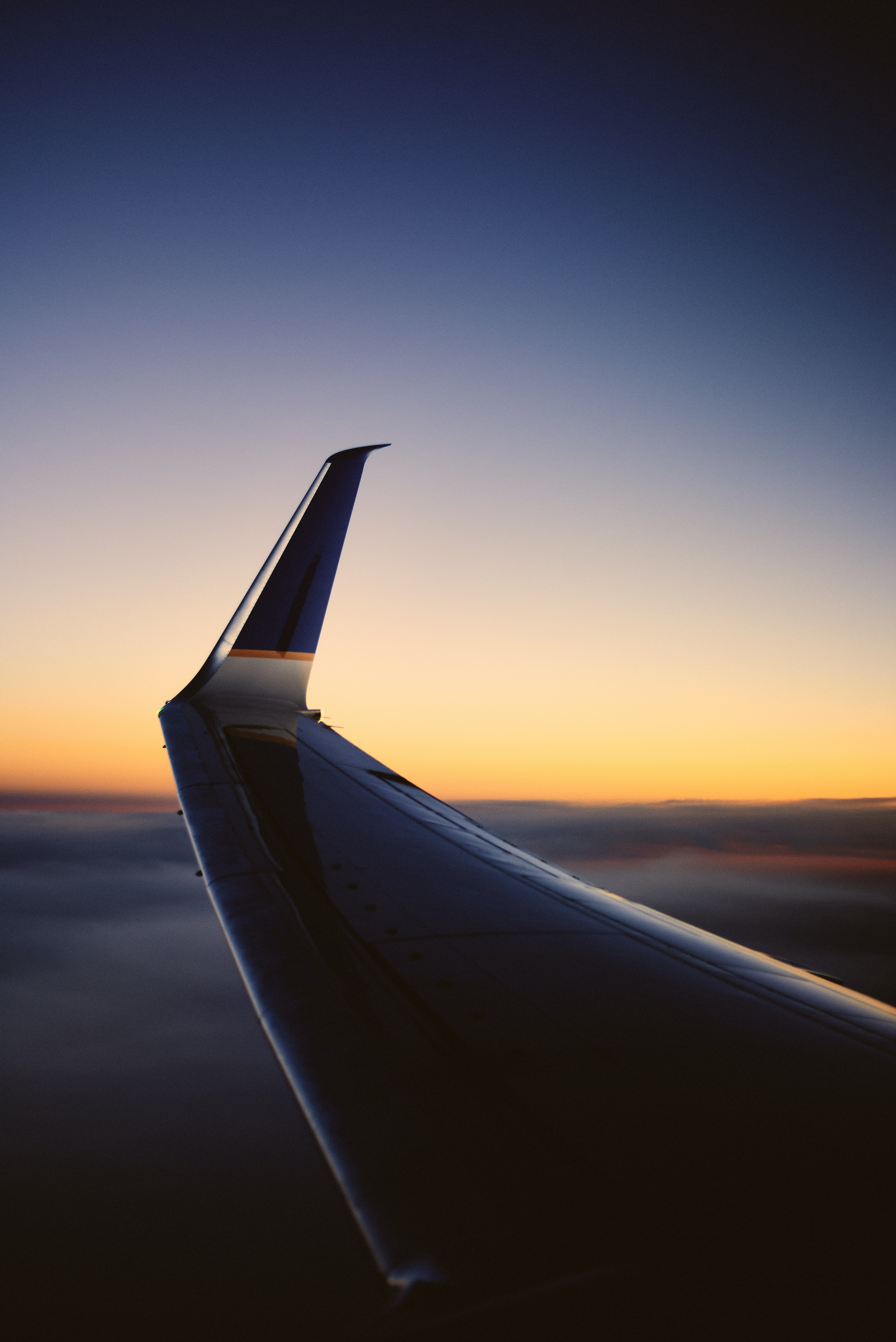 white airline wing