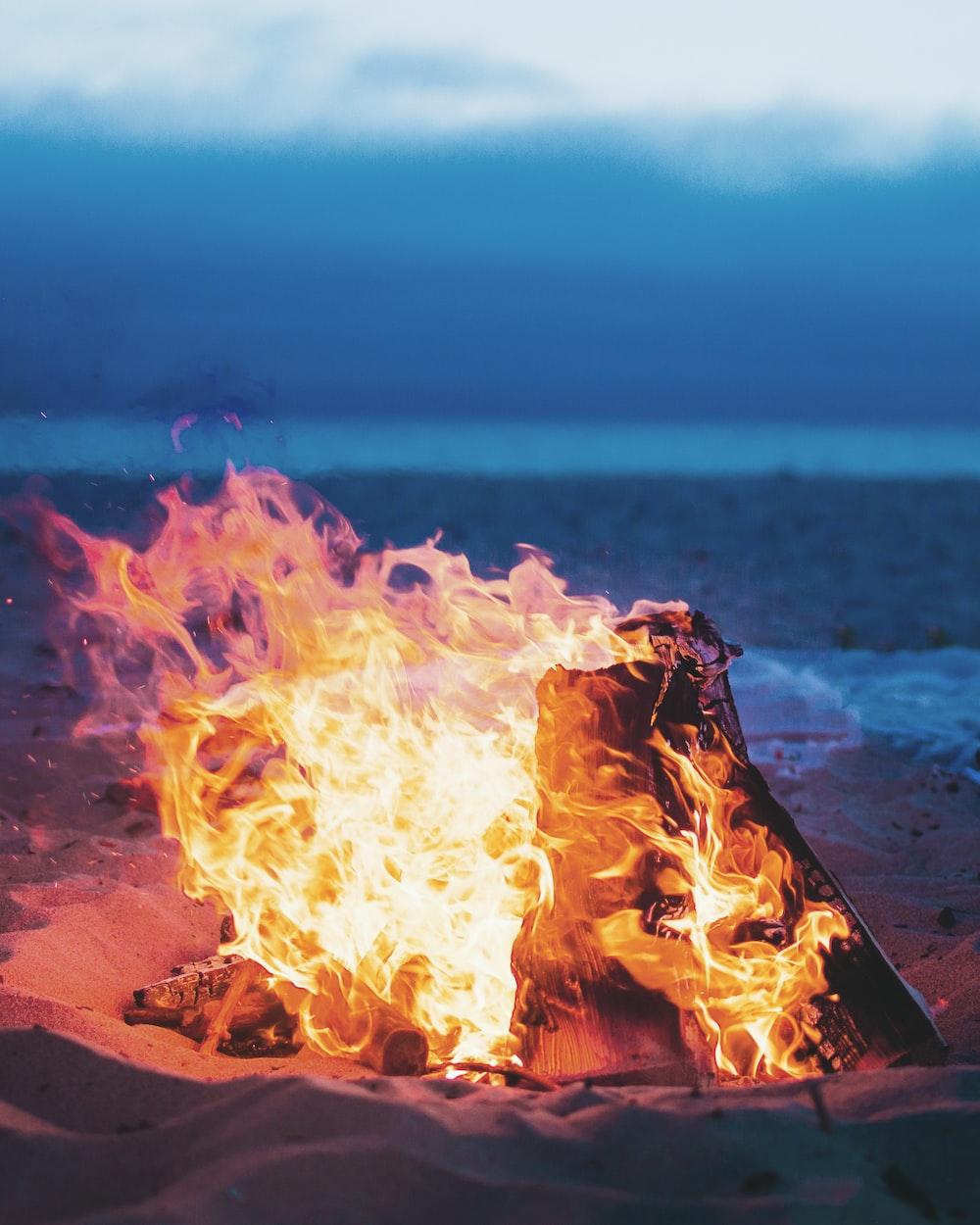 flamed bonfire near seashore