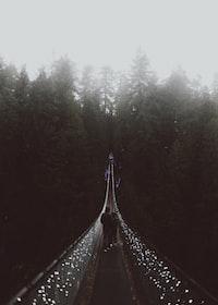 two person walking on suspension bridge taken at foggy morning