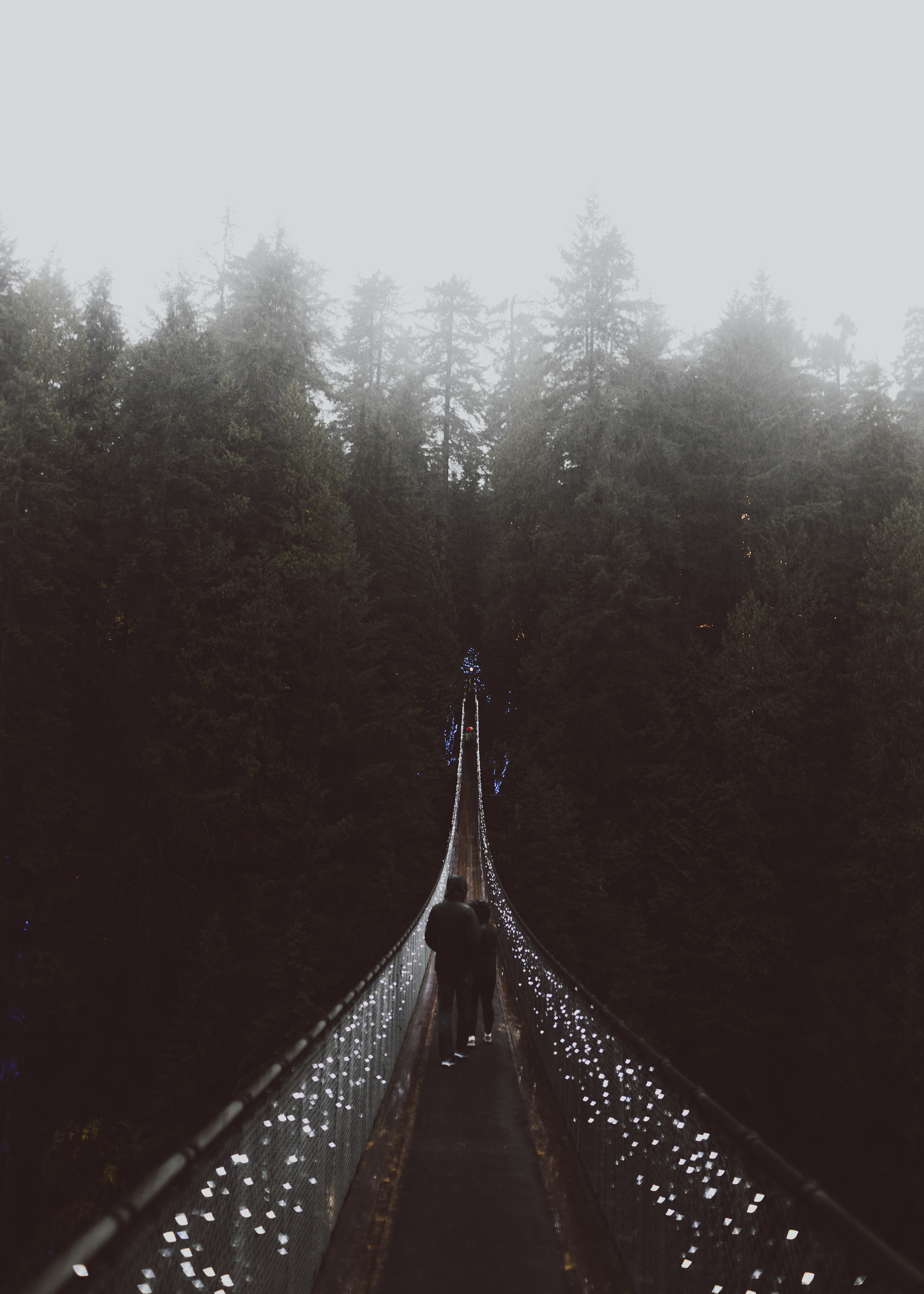 two person walking on suspension bridge taken at foggy morning