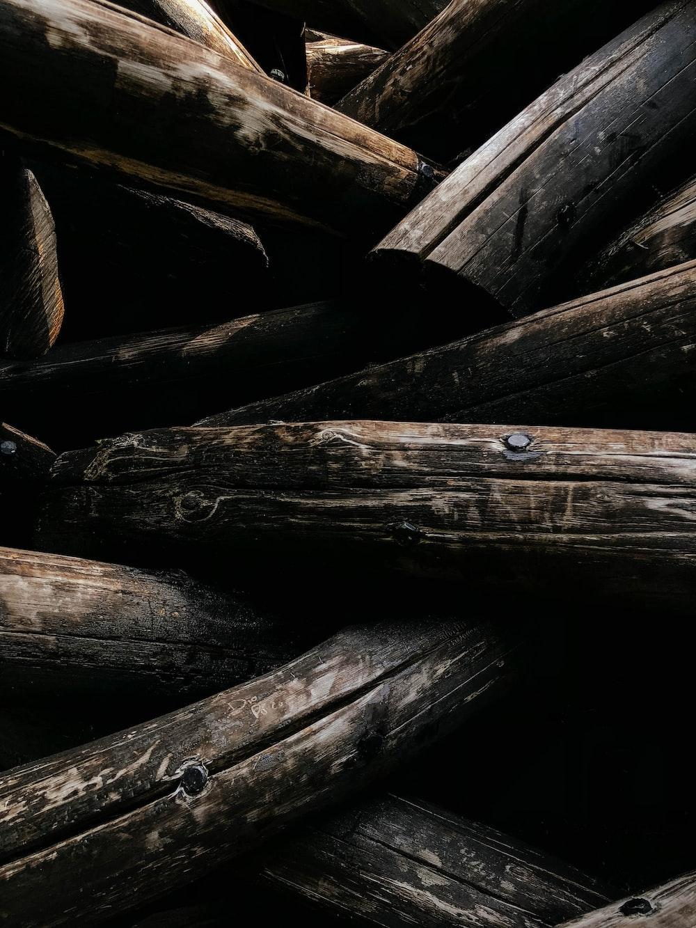 focus photo of brown firewood
