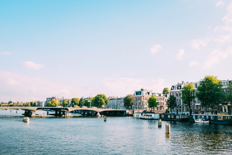 buildings and bridge near body of water