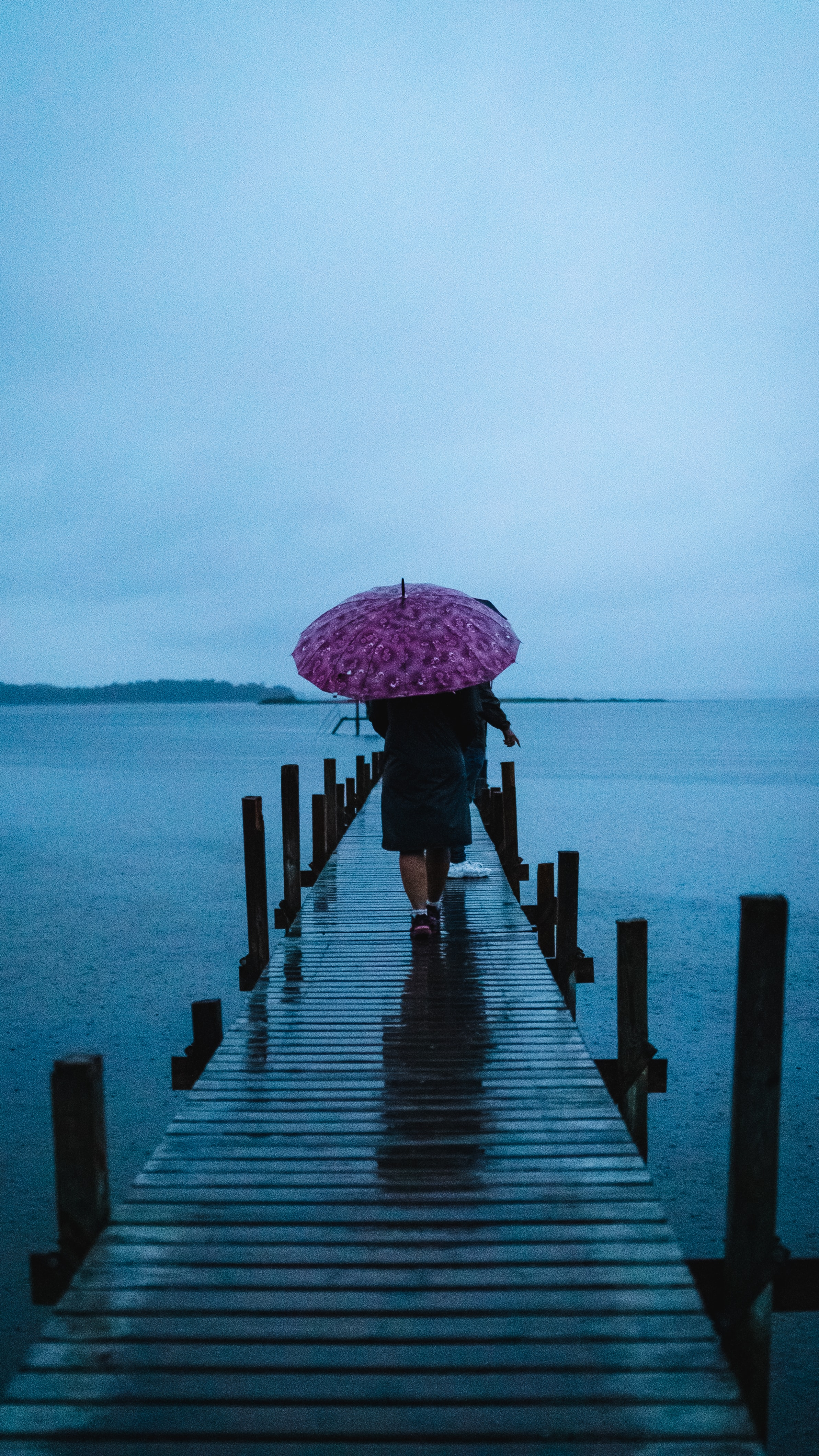 person carrying umbrella walking on dock